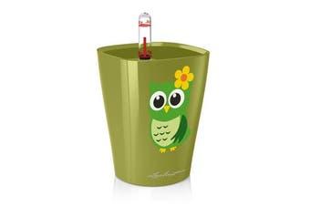 Lechuza Mini Deltini (Owl) (High Gloss Olive Green)
