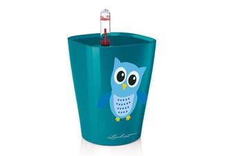 Lechuza Mini Deltini (Owl) High Gloss Peacock Blue)