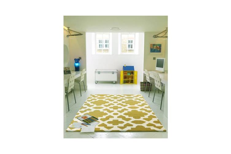 Flat Weave Trellis Design Green White Rug 225x155cm