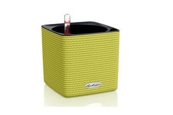 Lechuza Cube 14 (Green)