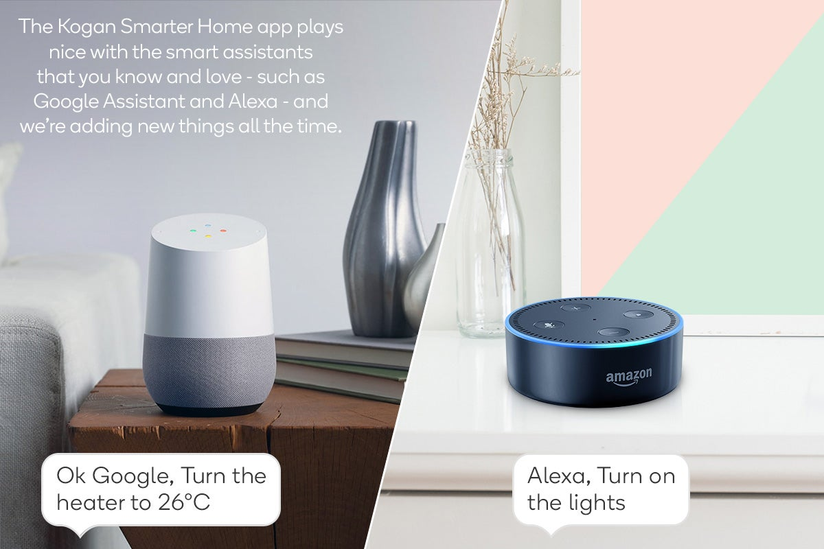 Google & Alexa Support