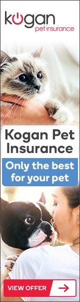 Kogan Pet Insurance