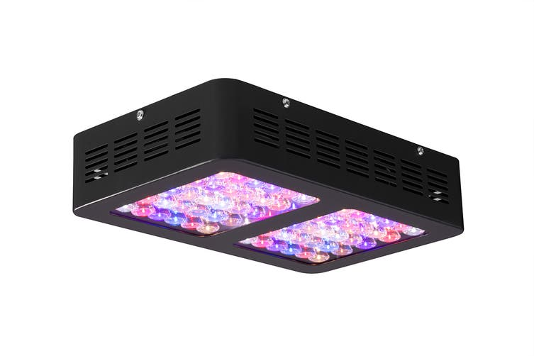 Certa 600W LED Grow Light