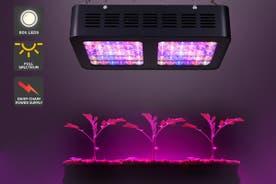 Certa 600W LED Grow Light