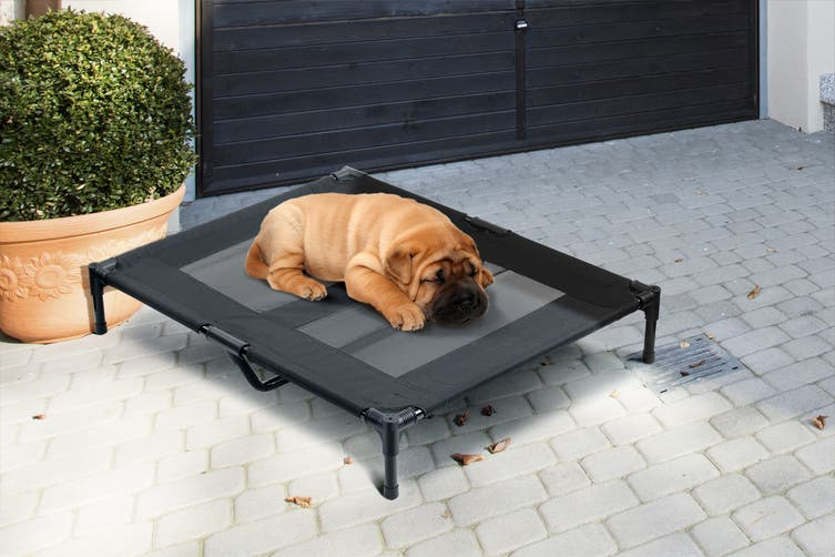 Pawever Pets Dog Trampoline Bed (Small / Medium)