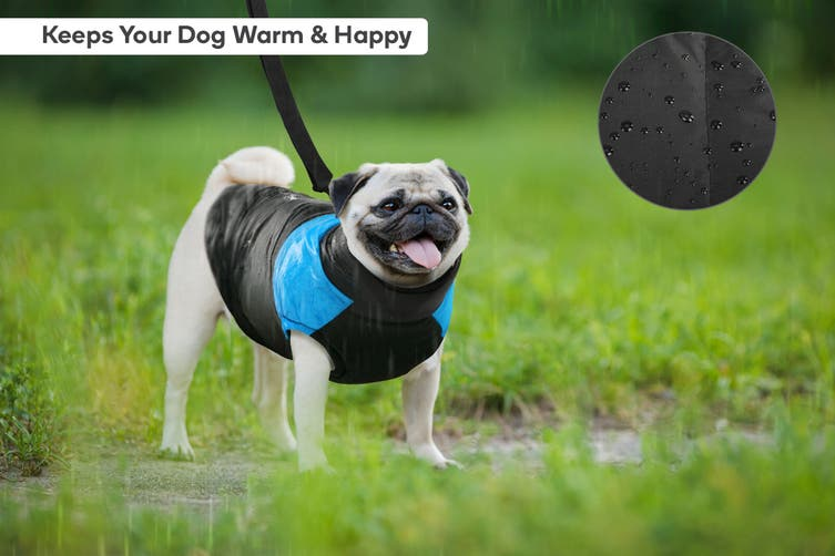 Pawever Pets Waterproof Dog Jacket (Small)
