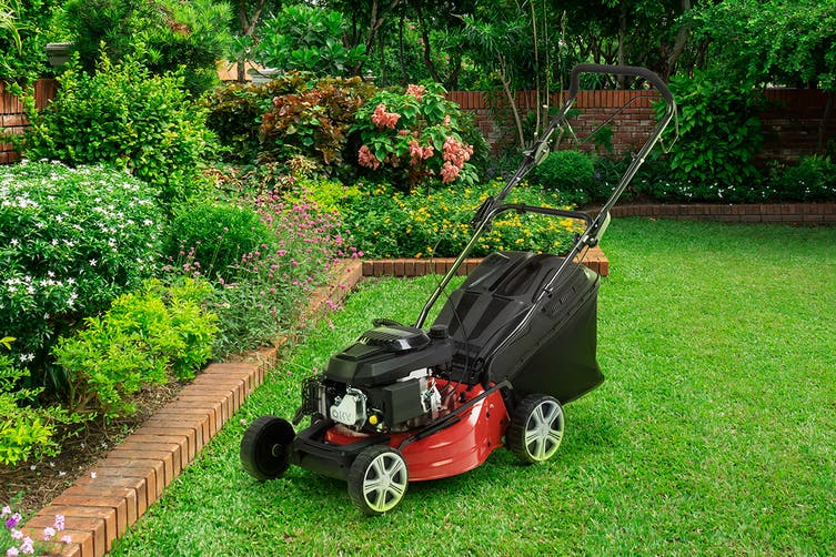 "Certa 18"" 146cc 4-in-1 Self Propelled Petrol Lawn Mower"