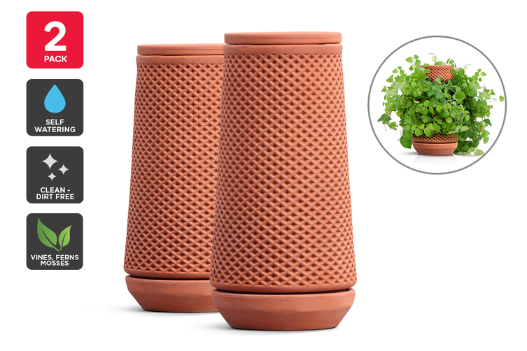 Certa Self-Watering Terracotta Ceramic Planter (2 Pack)