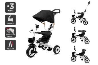 4-in-1 Baby Walker & Trike