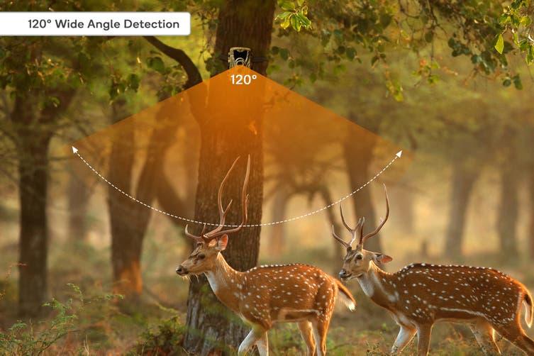 Kogan Hunting Trail Camera 20MP