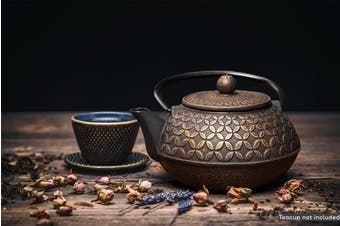 Ovela Cast Iron Teapot 700mL - Dynasty