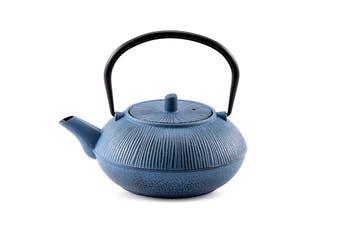 Ovela Cast Iron Teapot 700mL - Teal