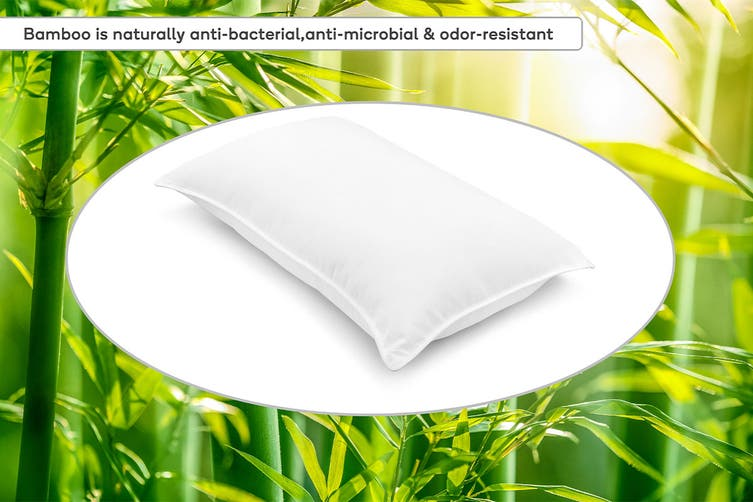 Ovela Set of 2 800GMS Bamboo Fibre Pillows