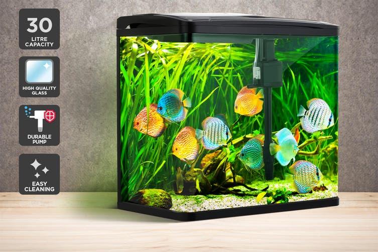 Pawever Pets Curved Glass LED Aquarium Fish Tank 30L