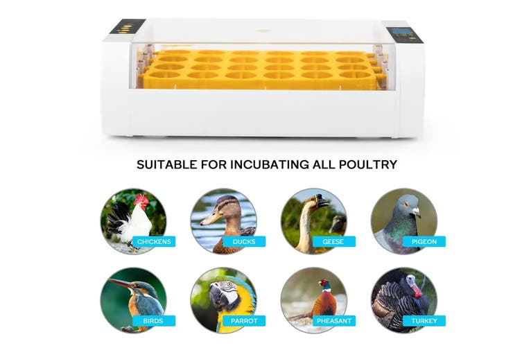 Pawever Pets Fully Automatic Digital Egg Incubator 24 Eggs