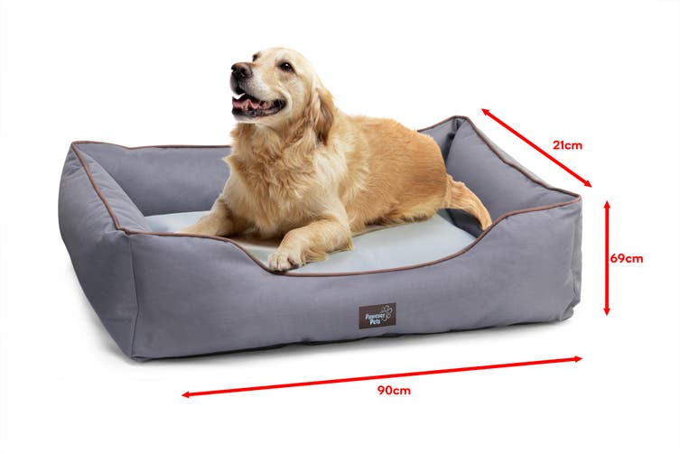Pawever Pets Anti-Spill Water-Resistant Pet Bed (Large)