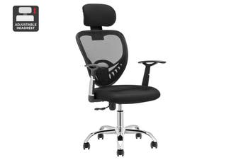 Ergolux Everyday Ergonomic Chair (Black)