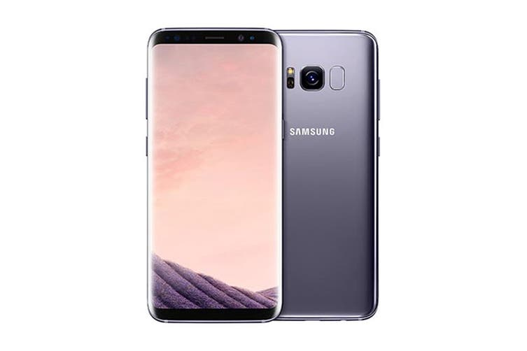 Samsung Galaxy S8+ (64GB, Orchid Grey)
