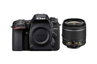 Nikon D7500 with AF-P DX NIKKOR 18-55mm f/3.5-5.6G VR Lens