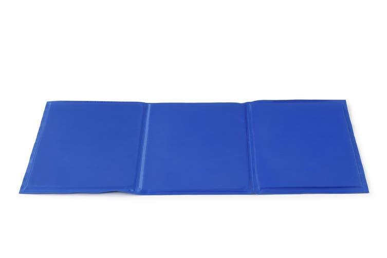 Pawever Pets Cooling Mat (Medium)