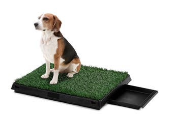 Pawever Pets Portable Potty Pad