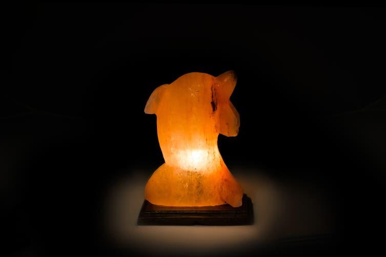 Himalayan Salt Lamp - Dolphin (3-4kg)