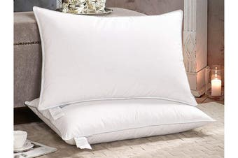 Renee Taylor Set of 2 FeatherLite Pillow