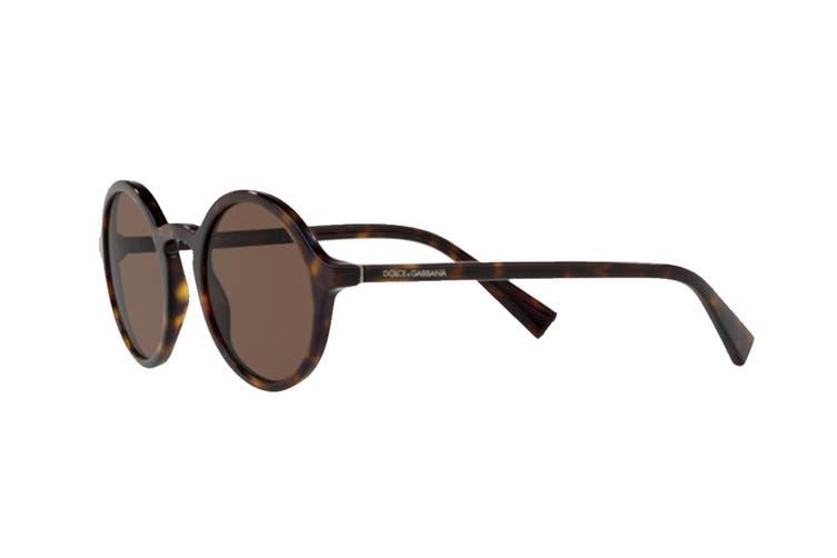 Dolce & Gabbana 0DG4342 Sunglasses (Havana) - Brown