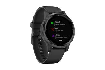 Garmin Vivoactive 4S (Black with Slate Hardware)