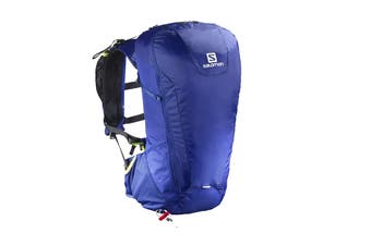 Salomon Bag Peak 30 (Surf The Web/Medieval Blue)