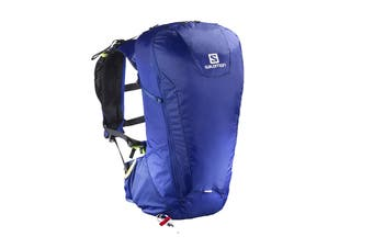 Salomon Bag Peak 20 (Surf The Web/Medieval Blue)