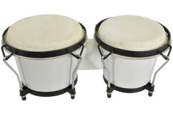Chord bongos White