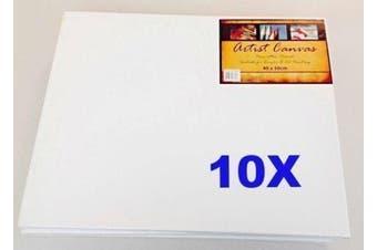 10x Artist Canvas Blank Canvases Painting/Paint/Oil/Acrylic Art 40x50cm