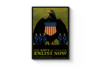 US Navy Enlist Now Advert Wall Art