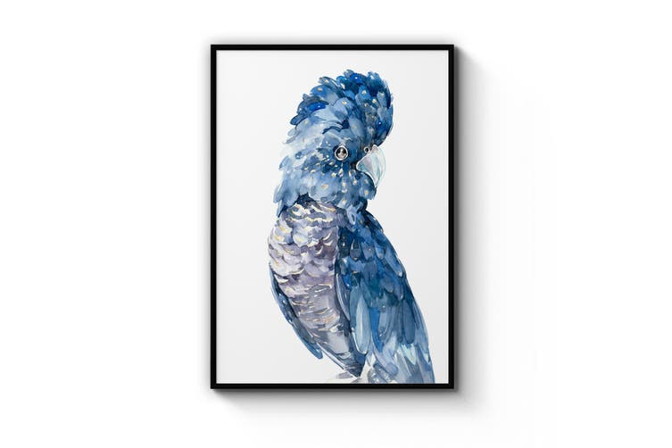 Blue Cockatoo Bird Wall Art