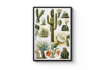 Cactus Botanical Wall Art