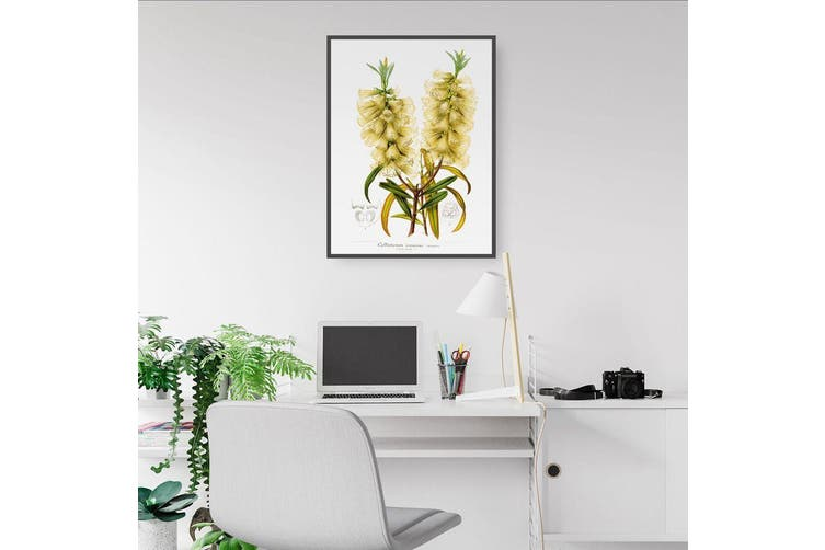 Yellow Flowers Botanical Wall Art