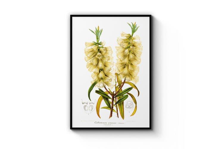 Yellow Flowers Botanical Wall Art