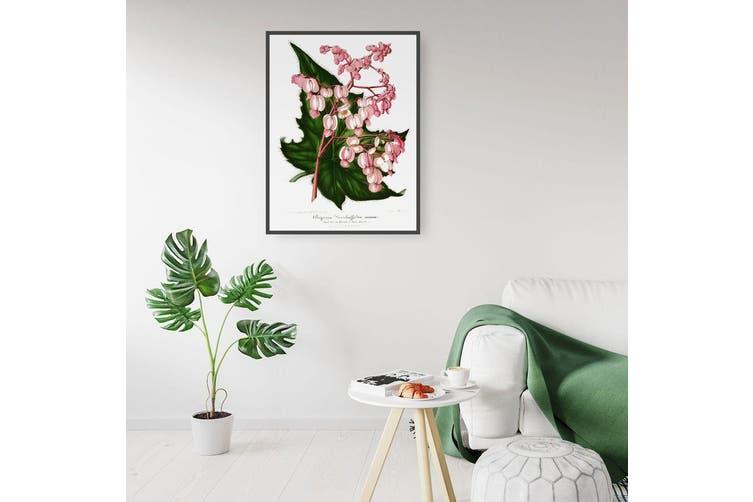 Pink Flowers Botanical Wall Art