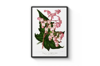 Pink Flowers Botanical Wall Art