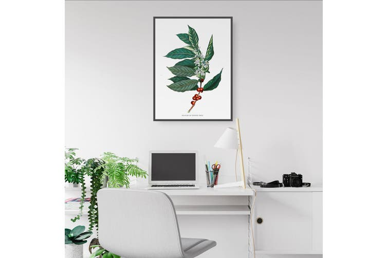 Coffee Branch Botanical Kitchen Cafe Wall Art