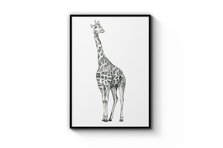 Giraffe Drawing Wall Art