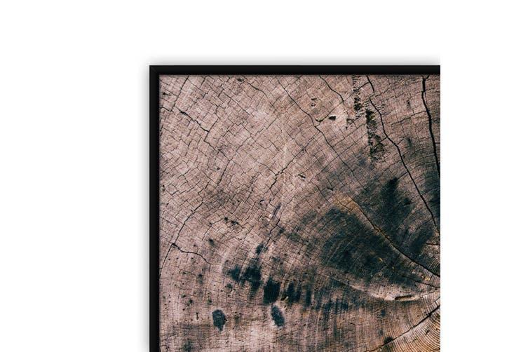 Wood Grain Abstract Photograph Wall Art