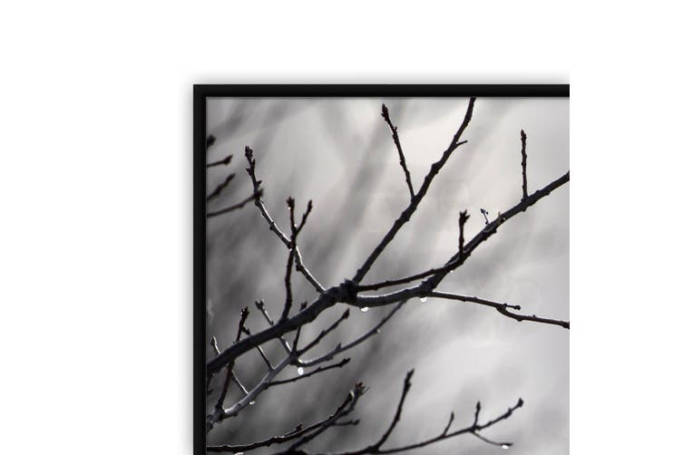 Winter Bush Landscape Photograph Wall Art