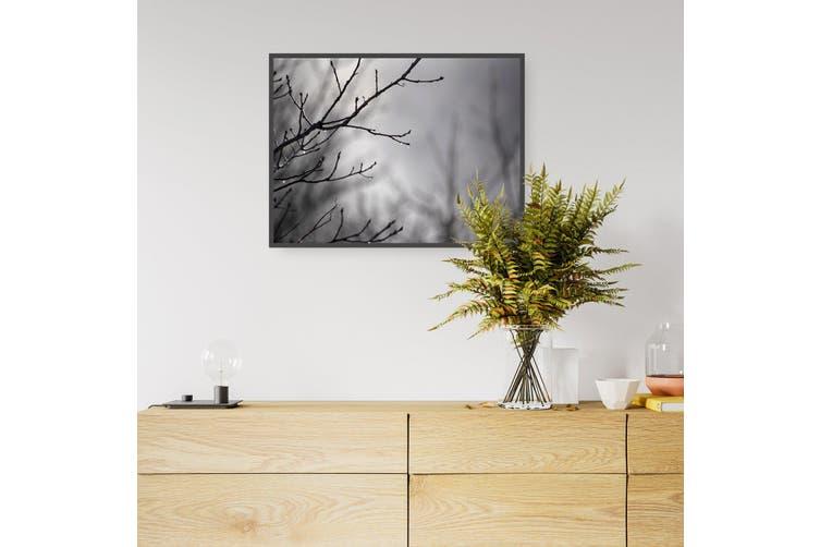 Winter Bush Landscape Photograph Wall Art