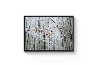 Winter Woodland Wall Art