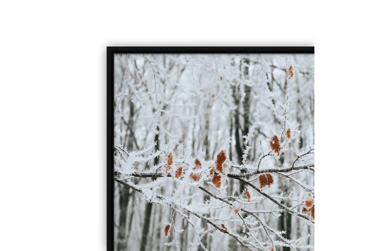 Winter Woodland Landscape Photograph Wall Art