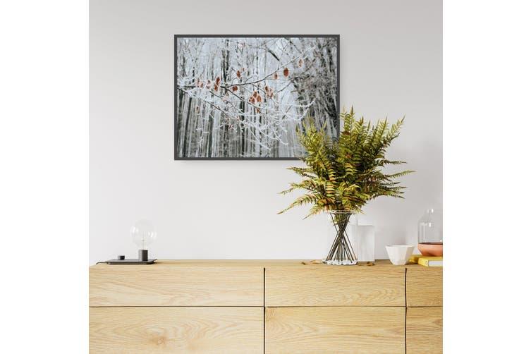 Winter Woodland Landscape Photograph Wall Art