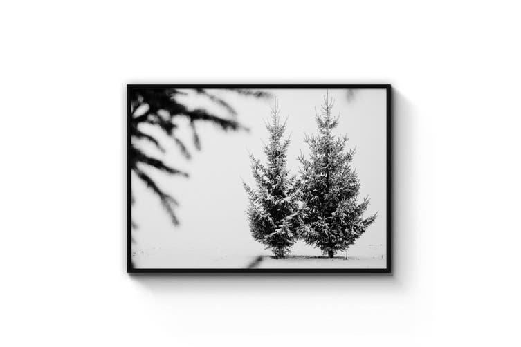 Winter Tree Nature Photograph Wall Art