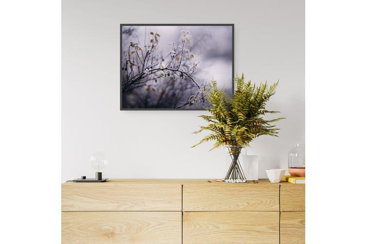 Winter Plant Nature Photograph Wall Art